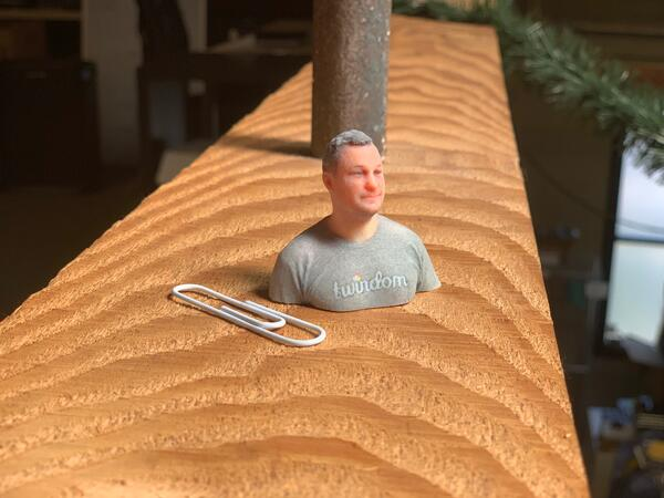 Stratasys J750 color 3D printed figurine Twindom